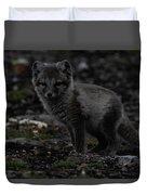 Arctic Fox Duvet Cover