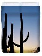 Arizona Cacti, 2008 Duvet Cover