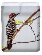 Arizona Ladderback Woodpecker Duvet Cover