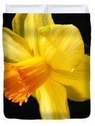 Sunny Yellows Of A Spring Daffodil  Duvet Cover