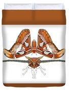 Atlas Moth4 Duvet Cover