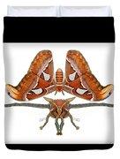Atlas Moth5 Duvet Cover