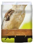 Australian Kookaburra Duvet Cover