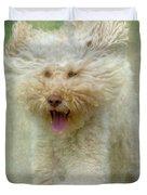 Australien Labradoodle Dog Duvet Cover by Heiko Koehrer-Wagner