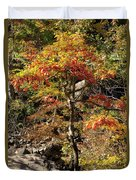 Autumn Color In Smoky Mountains National Park Duvet Cover