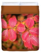 Autumnal Hues Duvet Cover