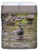 B63 Duvet Cover by Joshua Able's Wildlife