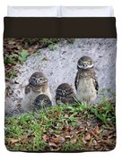 Baby Burrowing Owls Posing Duvet Cover