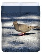 Baby Mourning Dove Duvet Cover
