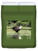 Bald Eagle's Look Duvet Cover