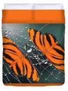 Banded Orange Butterfly. Duvet Cover