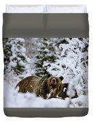 Bear In The Snow Duvet Cover