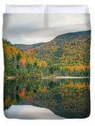 Beaver Pond Duvet Cover by James Billings