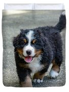 Bernese Mountain Dog Puppy 2 Duvet Cover