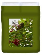 Berries And Waxwing Duvet Cover