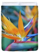 Bird Of Paradise Flowers Duvet Cover