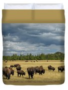 Bison In Yellowstone Duvet Cover