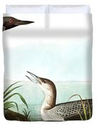Black Throated Diver, Colymbus Arcticus By Audubon Duvet Cover