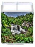 Blackwater Falls, Blackwater Falls State Park, West Virginia Duvet Cover