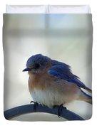 Bluebird Fluff Duvet Cover