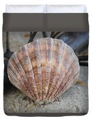 Brown Cockle Shell And Driftwood 2 Duvet Cover