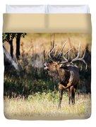 Bull Elk 3068 Duvet Cover
