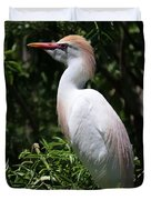 Cattle Egret With Breeding Feathers Duvet Cover