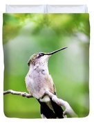 Charming Hummingbird Square Duvet Cover
