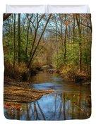 Clear Path Duvet Cover by Cindy Lark Hartman
