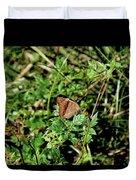 Common Buckeye Butterfly Duvet Cover