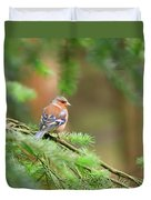 Common Chaffinch Fringilla Coelebs Duvet Cover