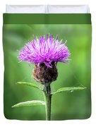 Common Knapweed 2 Duvet Cover
