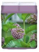 Common Milkweed Duvet Cover