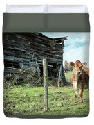Cow By The Old Barn, Earlville Ny Duvet Cover by Gary Heller