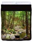 Creek In Massachusetts 2 Duvet Cover