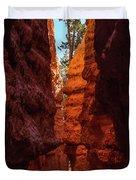 Crimson Crevice Duvet Cover