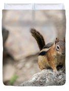 Curious Chipmunk Duvet Cover