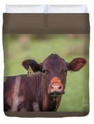 Curious Cow #636 Duvet Cover by Tom Claud