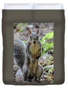 Cute Squirrel Duvet Cover