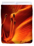 Day Lily Delight Duvet Cover