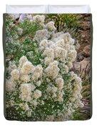 Desert Broom V1804 Duvet Cover by Mark Myhaver