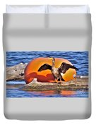 Double Crested Cormorant    Drying Wings         September        Indiana Duvet Cover