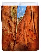 Dry Gulch Canyon Duvet Cover