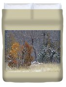 Early Winter On The Western Edge Duvet Cover