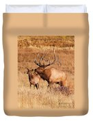 Elk And Mate In Rocky Mountain Meadow Duvet Cover