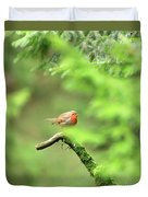 English Robin Erithacus Rubecula Duvet Cover