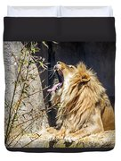 Fierce Yawn Duvet Cover by Kate Brown