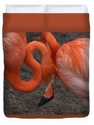 Flamingo Couple Duvet Cover