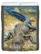 Florida Gator 2 Duvet Cover