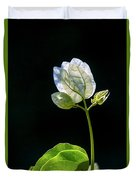 flowers of a Bougainvillea w4 Duvet Cover